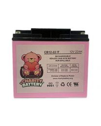 12V 22Ah Battery SLA Sealed Lead Acid Rechargeable Charity Battery CB12-22IT