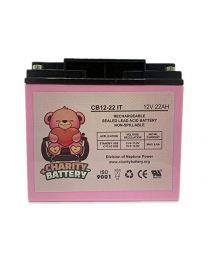 12V 22Ah Battery SLA Sealed Lead Acid Rechargeable Charity Battery CB12-22IT