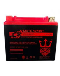 Neptune YTX12-BS 12V 12Ah Maintenance Free Powersports Battery