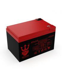 Neptune NT-12120 12V 12Ah Battery SLA Sealed Lead Acid