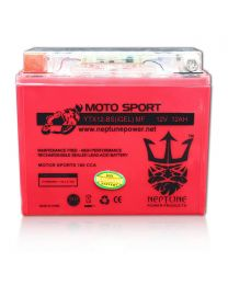 Neptune YTX12-BS GEL 12V 12Ah Maintenance Free Powersports Battery