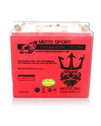 Neptune YTX14-BS GEL 12V 14Ah Maintenance Free Powersports Battery