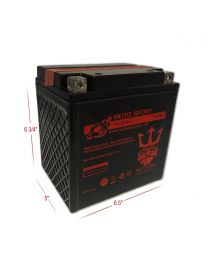 Neptune YTX30L-BS 12V 30Ah Bottle System Powersports Battery