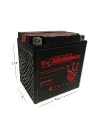 Neptune YTX30L-BS 12V 30Ah Bottle System Powersports Battery