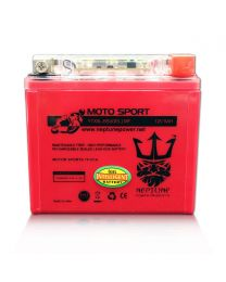 Neptune YTX5L-BS GEL 12V 5Ah Maintenance Free Powersports Battery